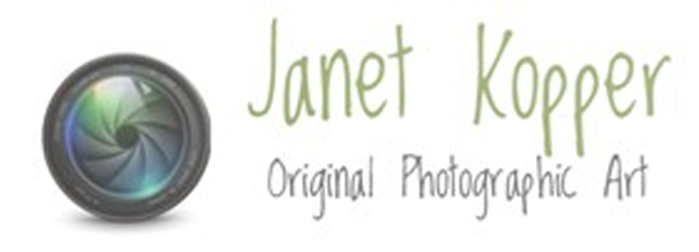 Janet Kopper - Website
